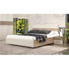 Двуспальная кровать Мишель 10 с ПМ